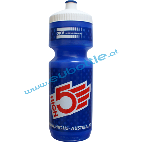 EU Bottle BigMouth 750ml clear-blue - High5 Austria